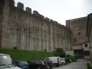 Mura di Cittadella prima dell'intervento di pulizia