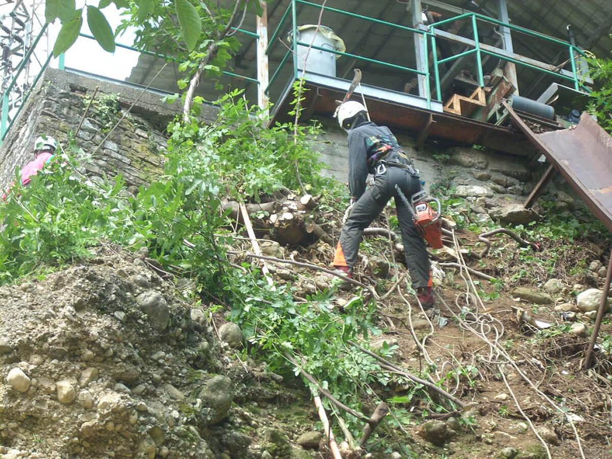 disbosco bonifica pareti Disbosco di parete rocciosa Valdagno