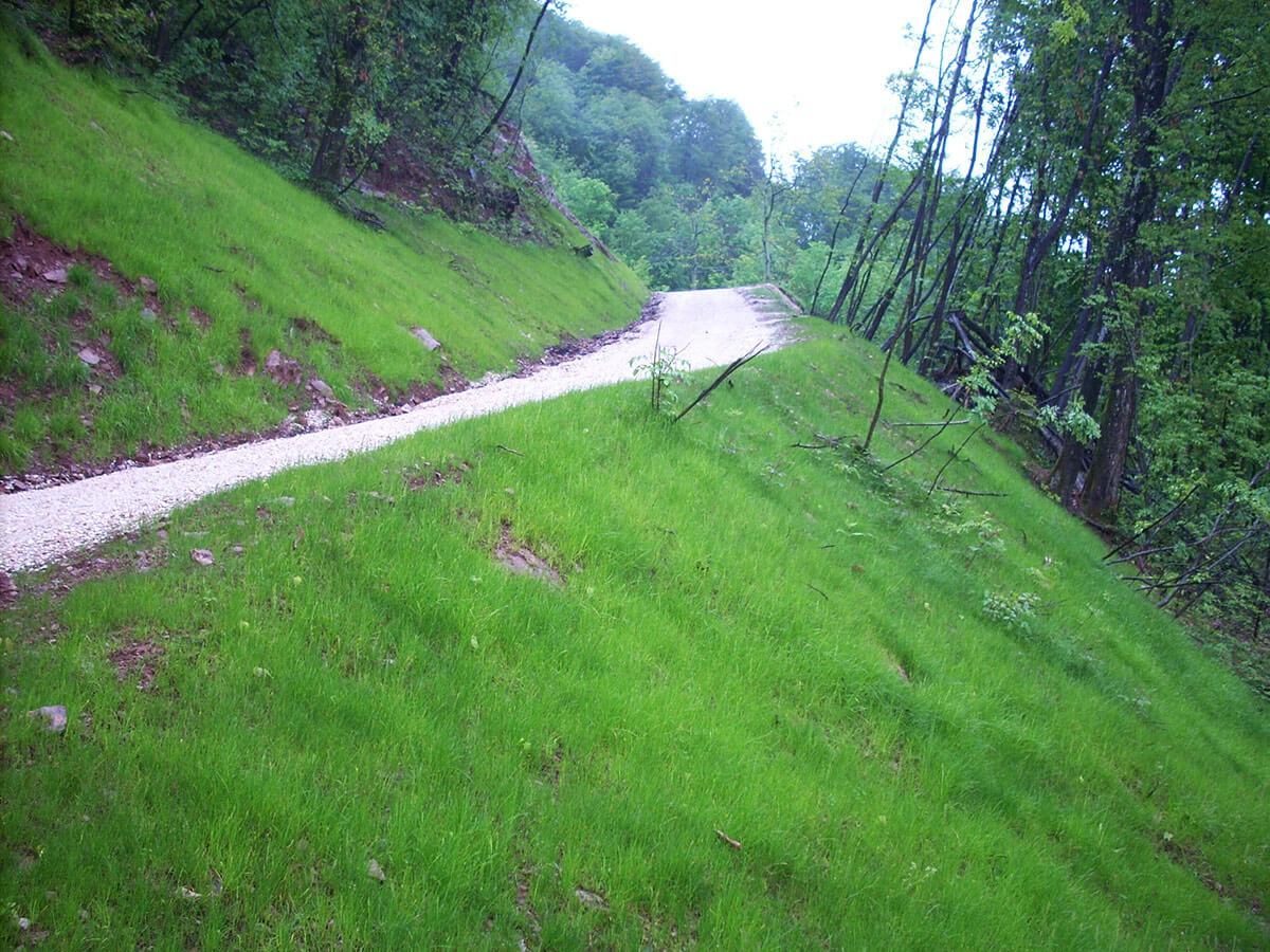 idrosemine rinverdimenti terre rinforzate Rinverdimento di scarpate dopo gli scavi Valli del Pasubio