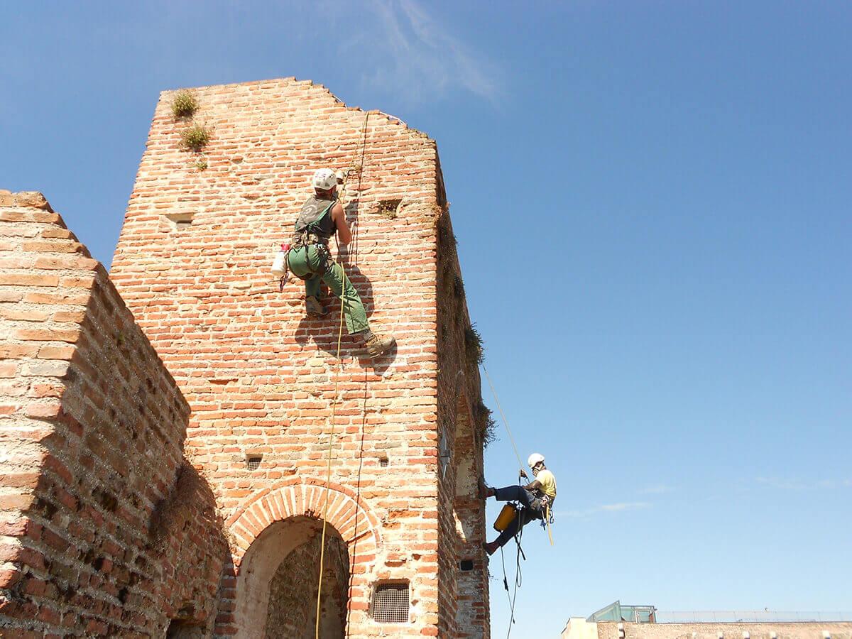 lavori su edifici lavori in fune Pulizia delle mura da erbe infestanti Cittadella