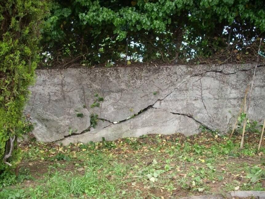 Crepe sui muri